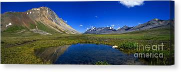 Jasper - Wilcox Pass Panorama Canvas Print by Terry Elniski