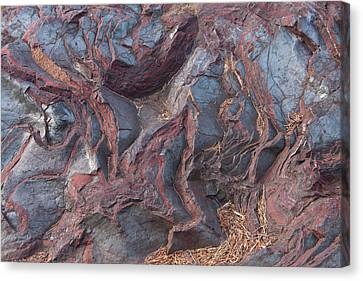 Jaspilite Canvas Print by Paul Rebmann