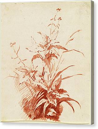 Jean-baptiste Hüet, I, Flowering Plant With Grass Canvas Print