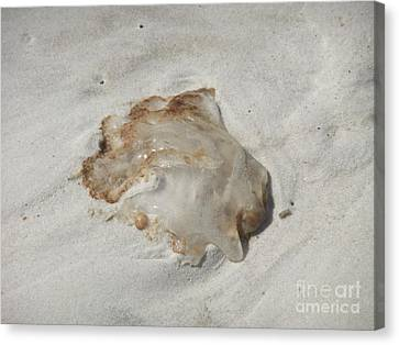 Canvas Print featuring the photograph Jellyfish Moon Or Mushroom by Deborah DeLaBarre