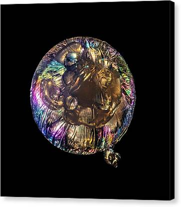 Jellyfish Canvas Print - Jellyfish Sculpture In Polarized Light by Robin Noorda