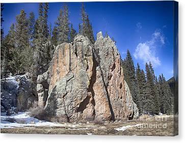 Jemez Mountain-rocks New Mexico  Canvas Print by Douglas Barnard