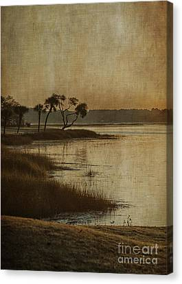 Jenkins Creek Dawn Canvas Print by Terry Rowe