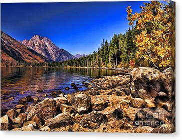 Canvas Print featuring the photograph Jenny Lake by Clare VanderVeen