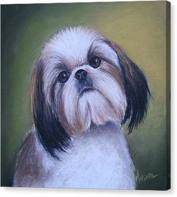 Canvas Print featuring the painting Jenny Wren Shih Tzu Puppy by Melinda Saminski
