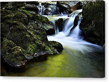Jessup River Waterfall Photographic Art Canvas Print by Movie Poster Prints