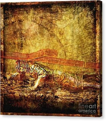 Jesus Falls Third Time Via Dolorosa 9 Canvas Print