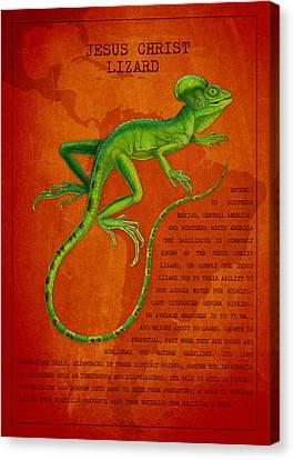Jesus Lizard Canvas Print by Aged Pixel