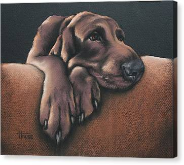Jethro Canvas Print by Cynthia House