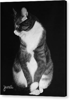 Jetson Canvas Print