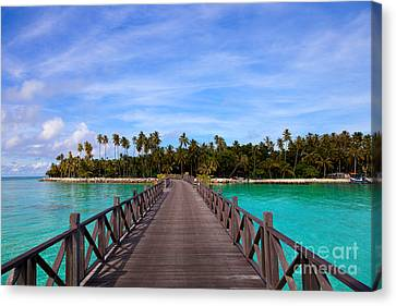 Jetty On Tropical Island Canvas Print by Fototrav Print
