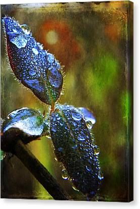 Jeweled Leaves Canvas Print