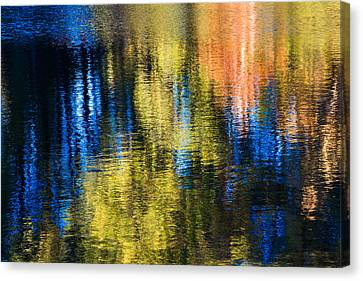 Jeweled Reflection 1 Canvas Print