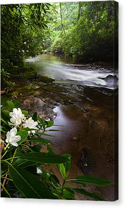 Jewels Of The Davidson River 2 Canvas Print