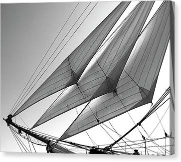 Jib Sails Canvas Print