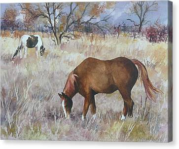 Jill's Horses On A November Day Canvas Print by Anne Gifford