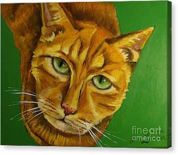 Jing Jing - Cat Canvas Print