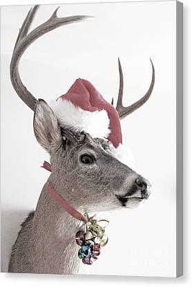 Jingle Deer Canvas Print