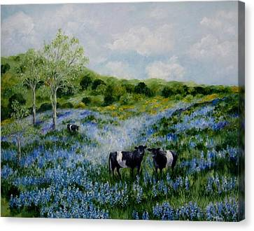 Joanie's Cows In The Lupine Field Canvas Print