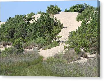 Sand Dunes Canvas Print - Jockey's Ridge 8 by Cathy Lindsey