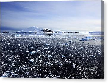 Joe Fox Fine Art - Brash Ice Floating In The Lemaire Channel Sea Around Antarctica Canvas Print by Joe Fox