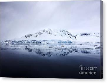 Joe Fox Fine Art - Snow Covered Fournier Bay In Anvers Island Antarctica Canvas Print by Joe Fox