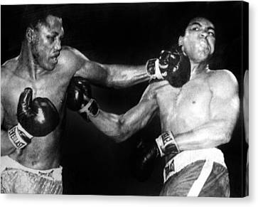 Joe Frazier Vs. Muhammad Ali Canvas Print by Everett