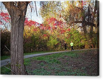 Joggers In Parkland In Autumn Canvas Print by Jim West