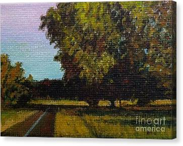 Jogging Trail At Two Rivers Park Canvas Print by Amber Woodrum