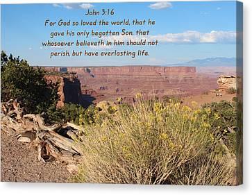 John 3-16 Canyonlands N P  Canvas Print