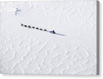 John Bakers Team Running Down Frozen Yukon River  Canvas Print by Jeff Schultz