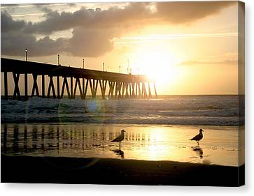 Johnnie Mercer's Pier With Birds Canvas Print by Phil Mancuso