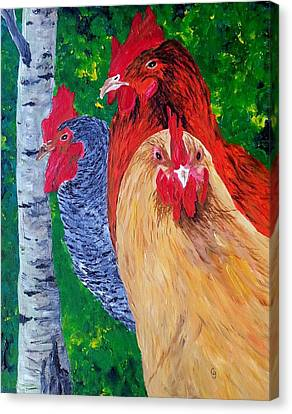 John's Chickens Canvas Print