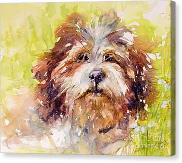 Jolly June Canvas Print