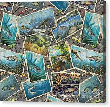 Jon Q Wright Fish Paintings Pillow Canvas Print