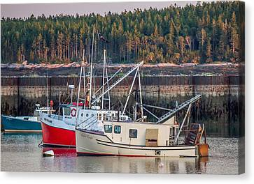 Canvas Print featuring the photograph Jonesport Maine  by Trace Kittrell