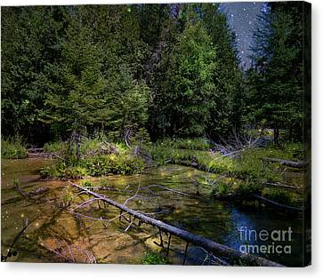 Jordan Headwaters In The Moonlight Canvas Print