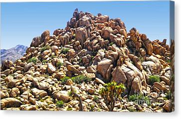 Joshua Tree - 01 Canvas Print by Gregory Dyer