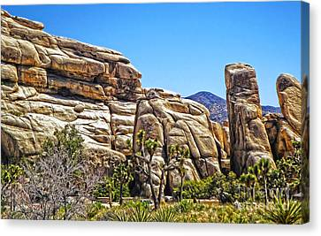 Joshua Tree - 10 Canvas Print by Gregory Dyer