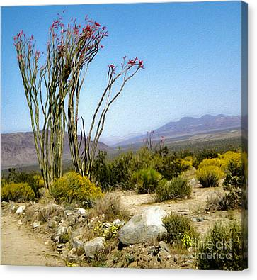 Joshua Tree - 18 Canvas Print by Gregory Dyer