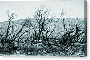 Joshua Tree - Burned Out Trees Canvas Print by Gregory Dyer