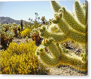 Joshua Tree Cholla Cactus Garden Canvas Print by Gregory Dyer