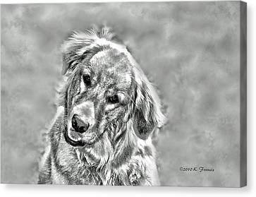 Josie Canvas Print by Kenny Francis