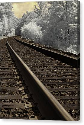Journey On The Tracks Canvas Print by Luke Moore