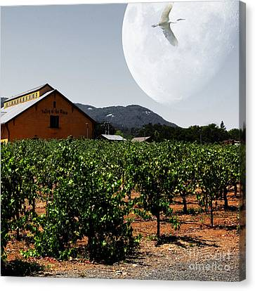 Napa Valley And Vineyards Canvas Print - Journey Through The Valley Of The Moon 5d24485 Square by Wingsdomain Art and Photography