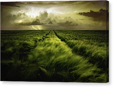 Journey To The Fierce Storm Canvas Print by Sona Buchelova