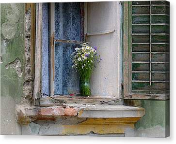 Joy In The Window Canvas Print