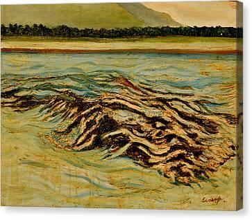 Joy Of Freedom-2 Canvas Print by Anand Swaroop Manchiraju