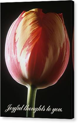 Canvas Print - Joyful Thoughts To You. by Harold E McCray