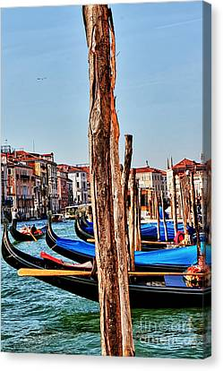 Joyride-venice Italy Canvas Print by Tom Prendergast